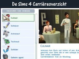 De Sims 4 Carrièreoverzicht
