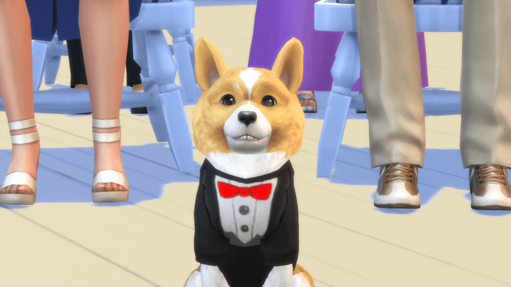 Sims 4 Honden en Katten 05 Corgi in Tux
