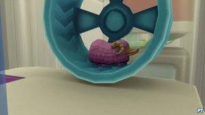 Sims 4 Mijn Eerste Huisdier Accessoires Review 25